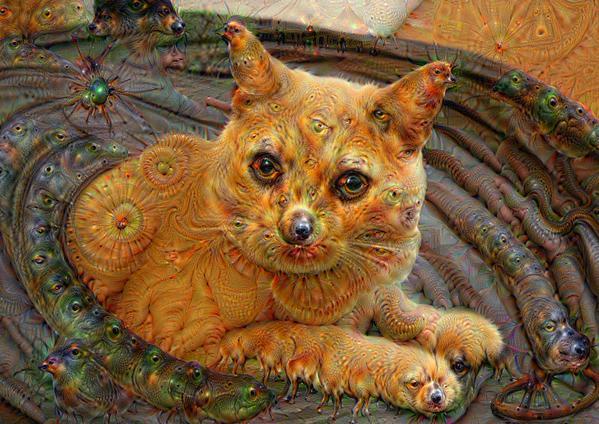 Google Throws Open Deepdream Software To Create Bizarre Images-6825
