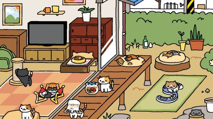 japanese online cat game neko atsume sees million downloads