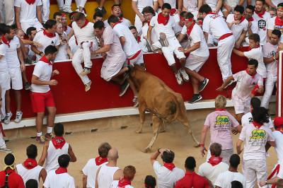 pamplona running bulls san fermin