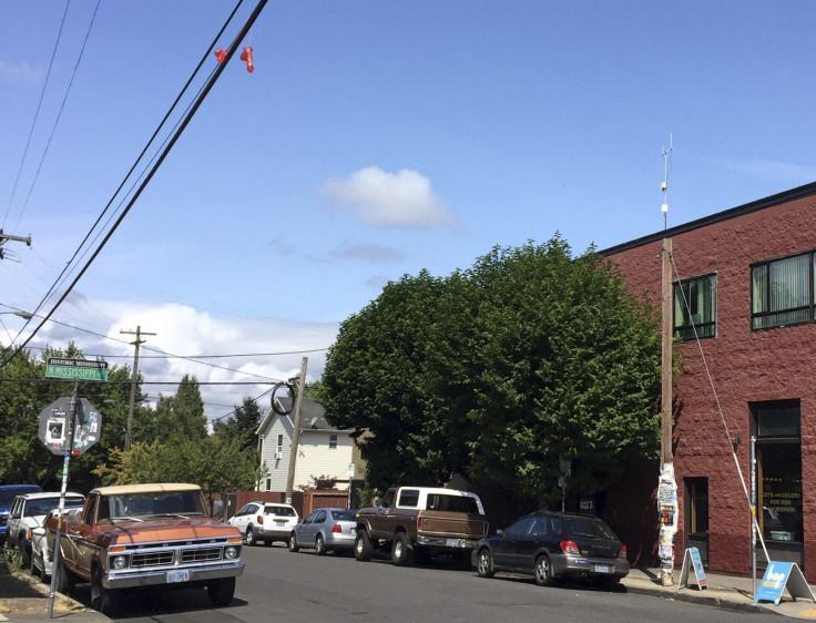 dildos Portland