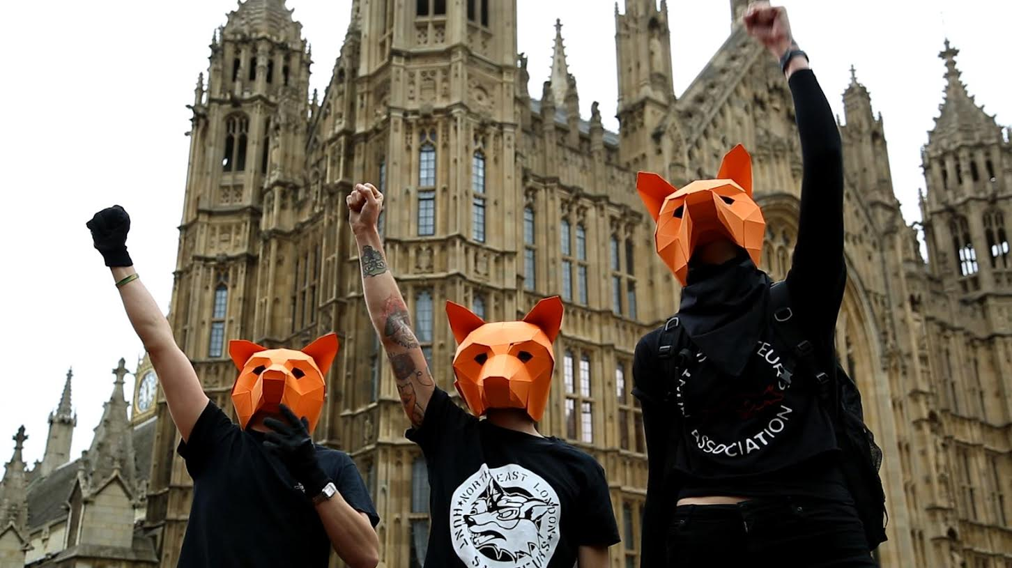 Fox hunting protesters