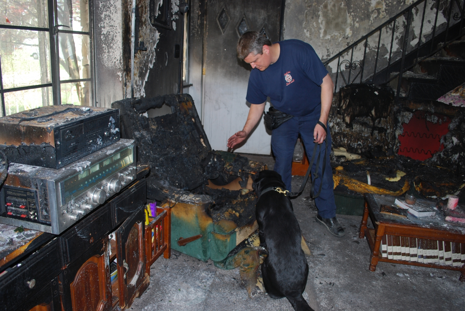 A dog trained to detect arson