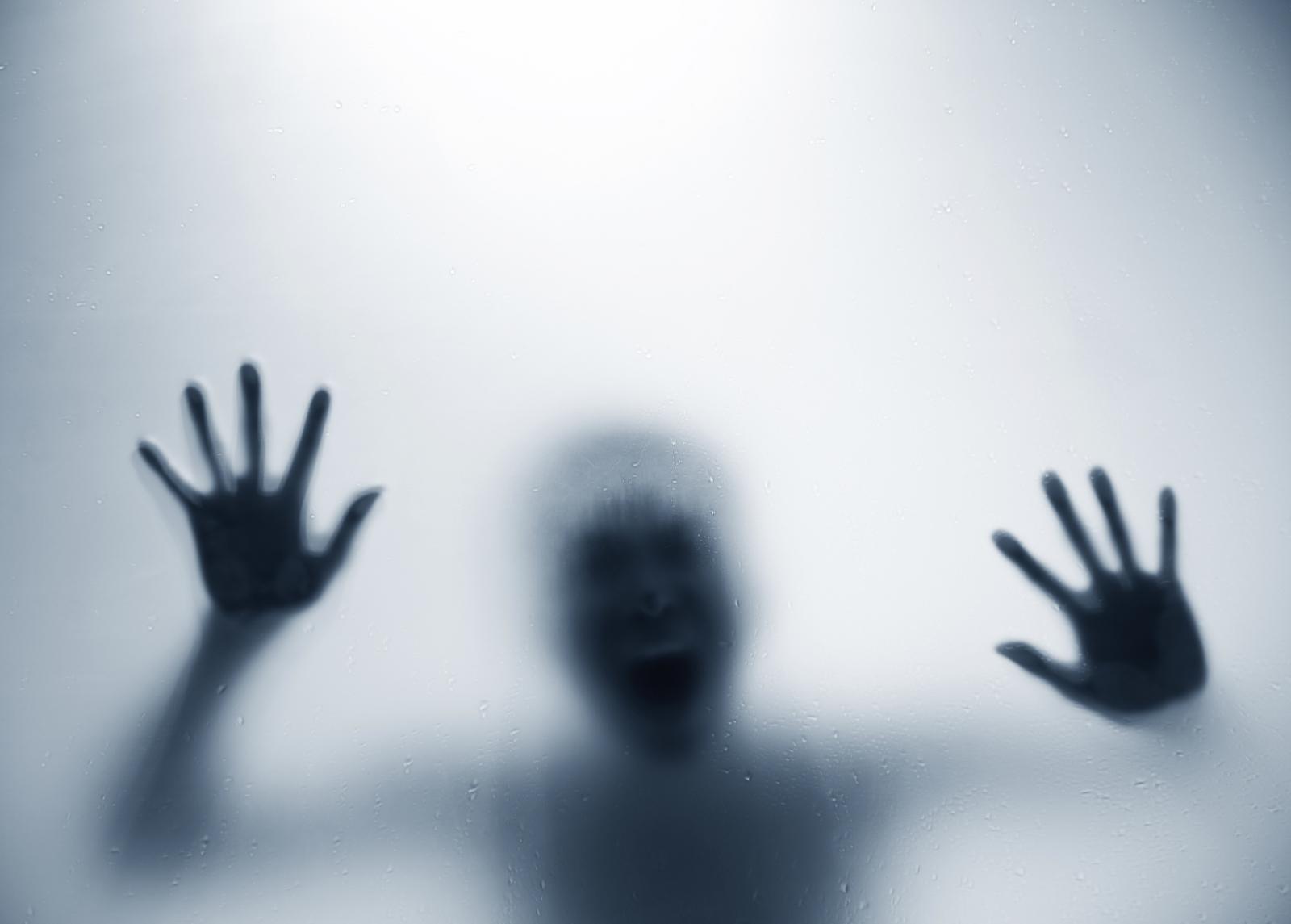 scream fear brain