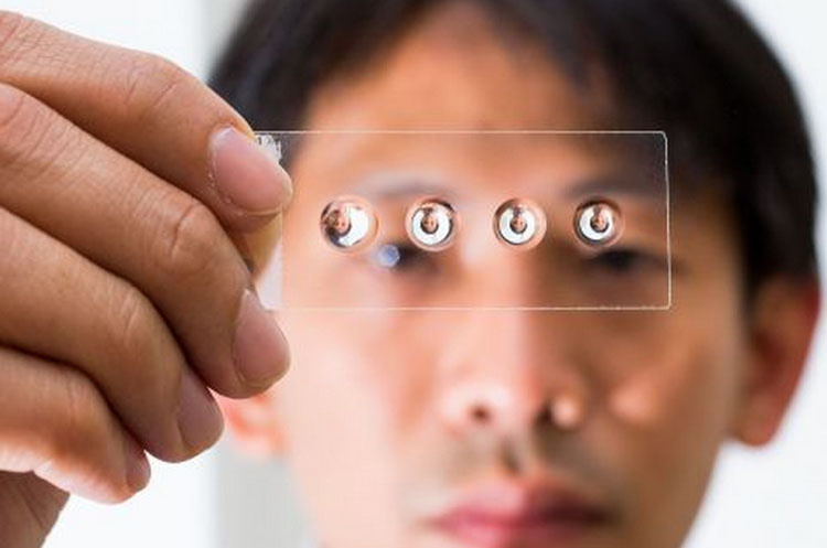 Low-cost lenses now available to the public