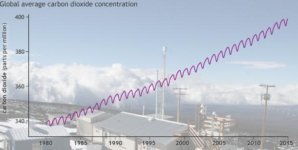 CO2 LEVELS