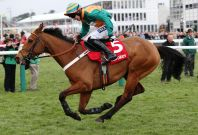 Ladbrokes horse betting
