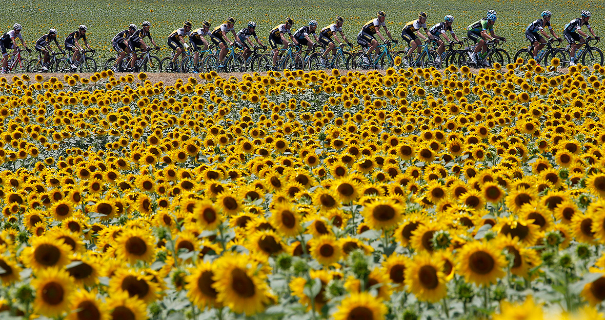 Tour de France 2015 photos