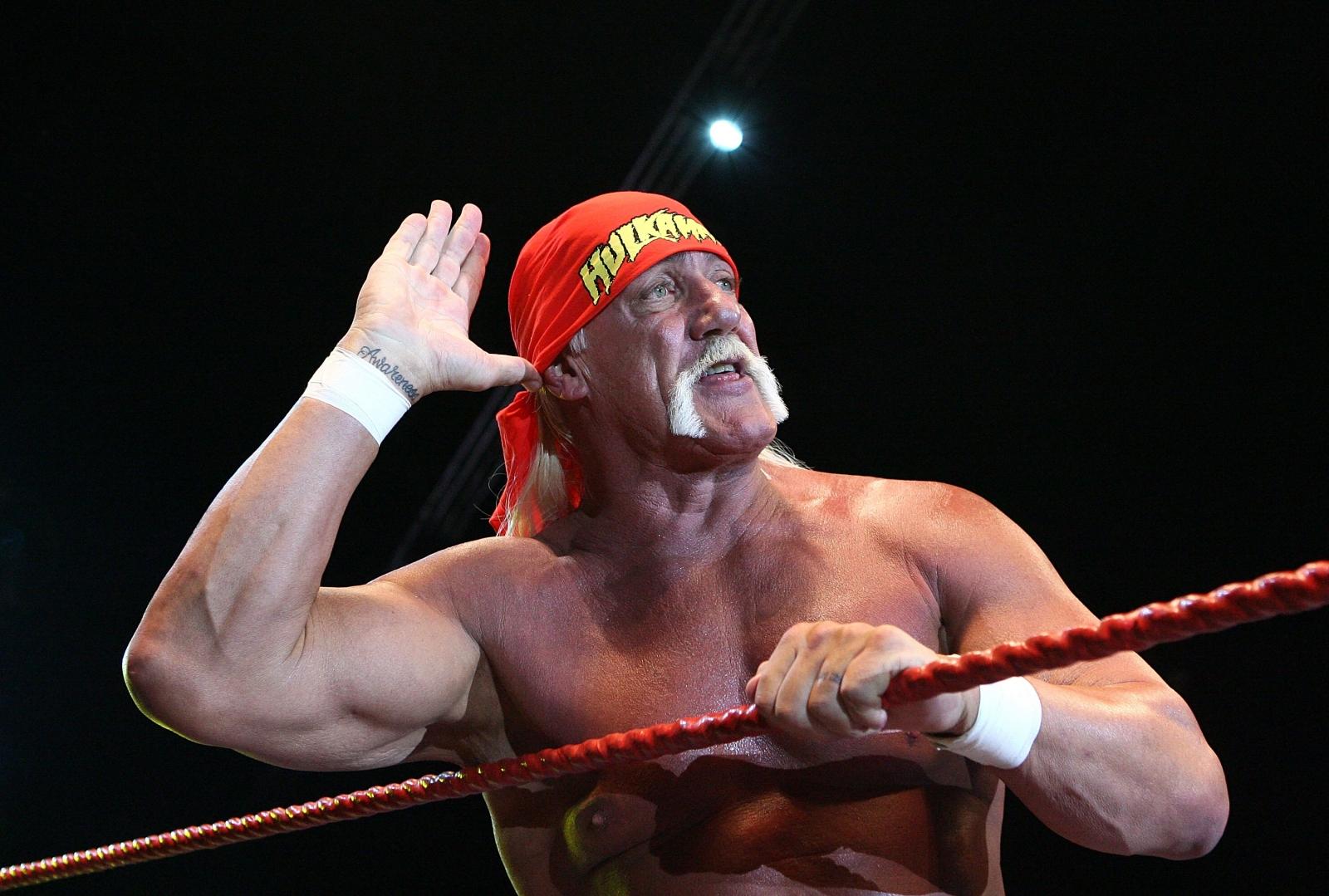 Hulk Hogan WWE Hall of Fame