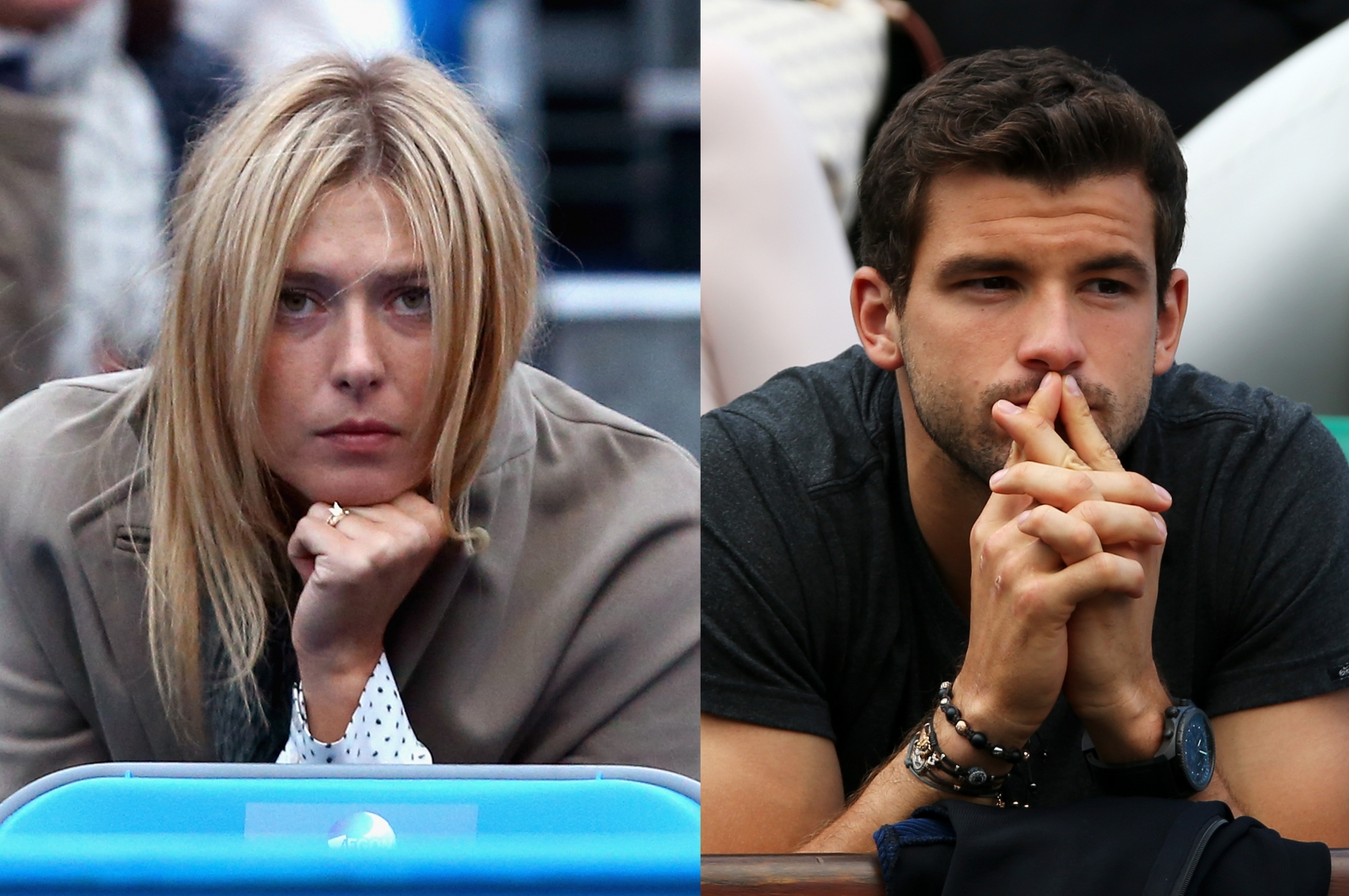 Dimitrov dating sharapova