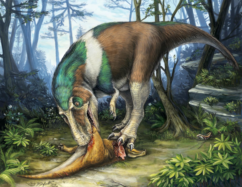 Gorgosaurus teeth