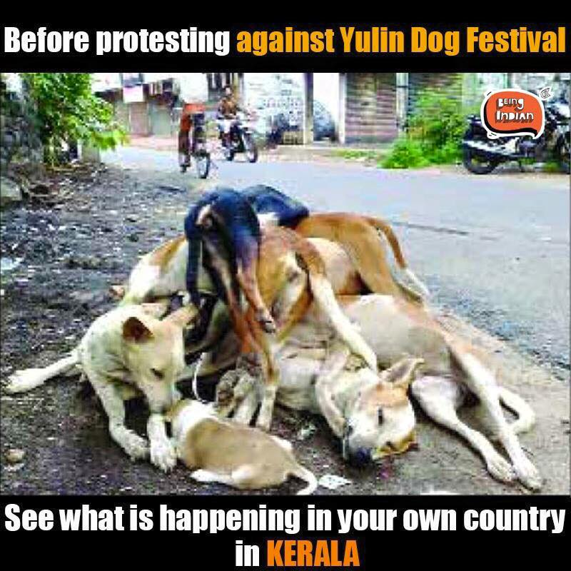 DOG CULLING