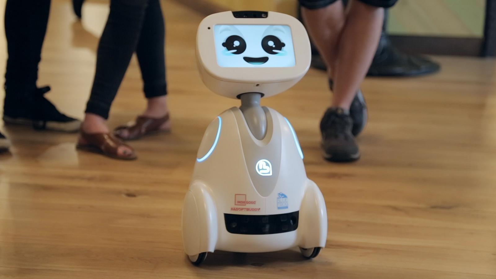 Buddy the robot