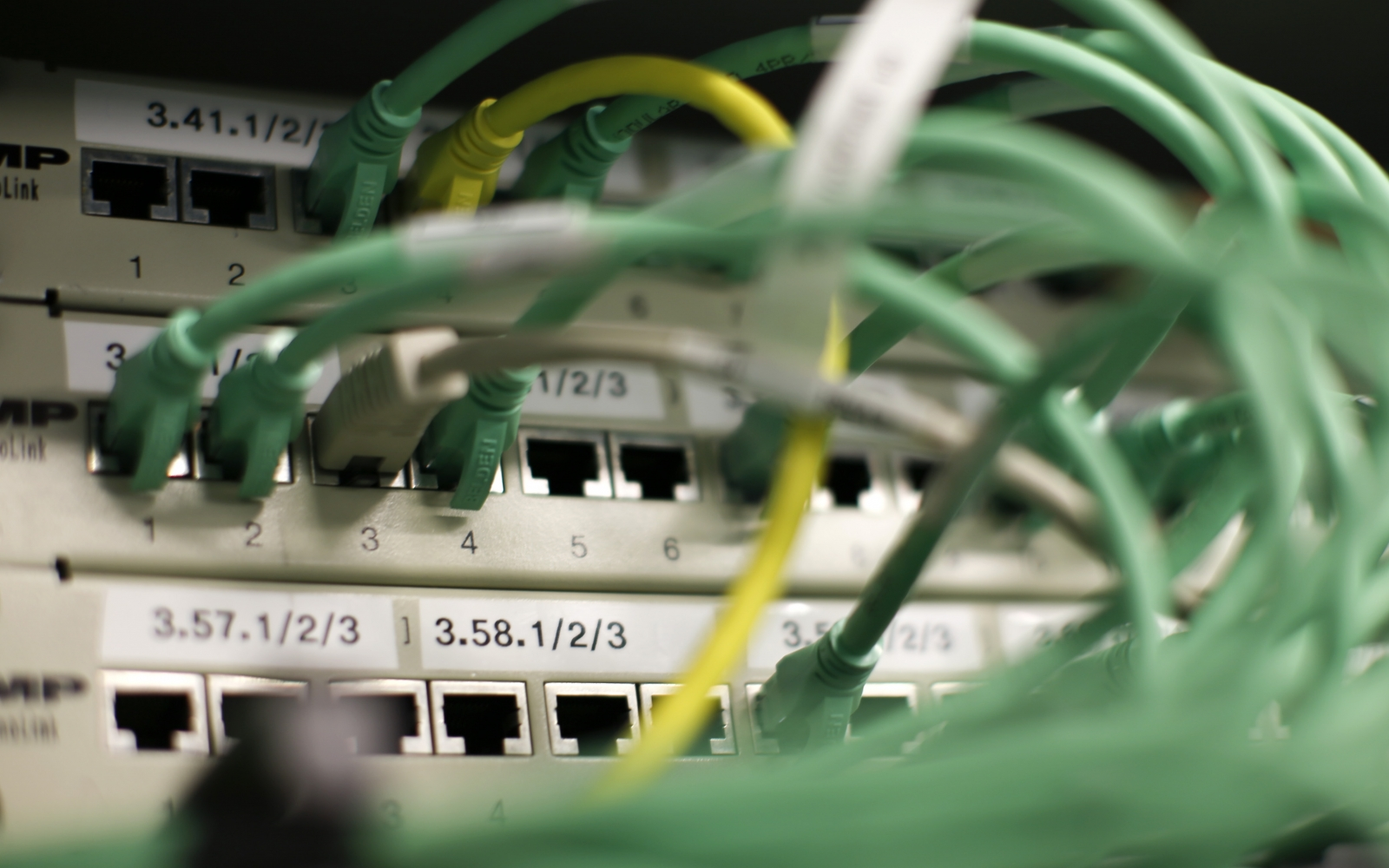 ethernet cables in router
