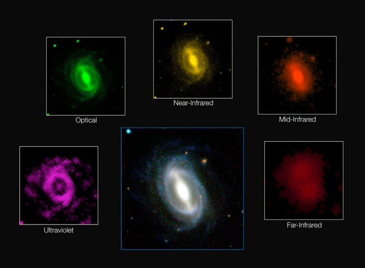 Galaxy Images from the GAMA