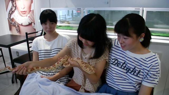 Snake Cafe