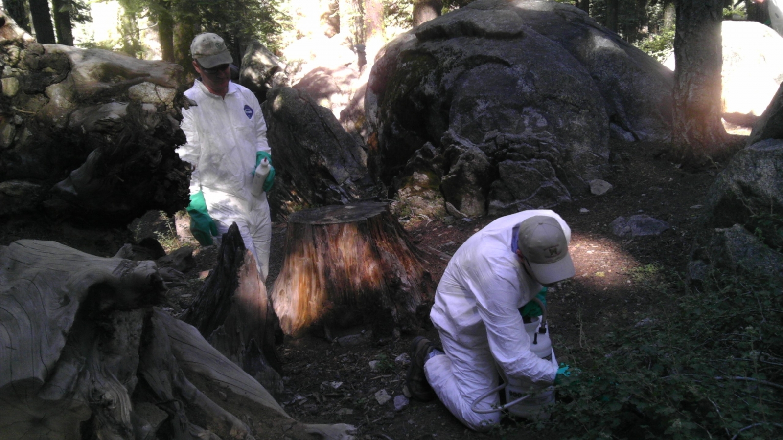 Scientists perform tests in Yosemite National Park