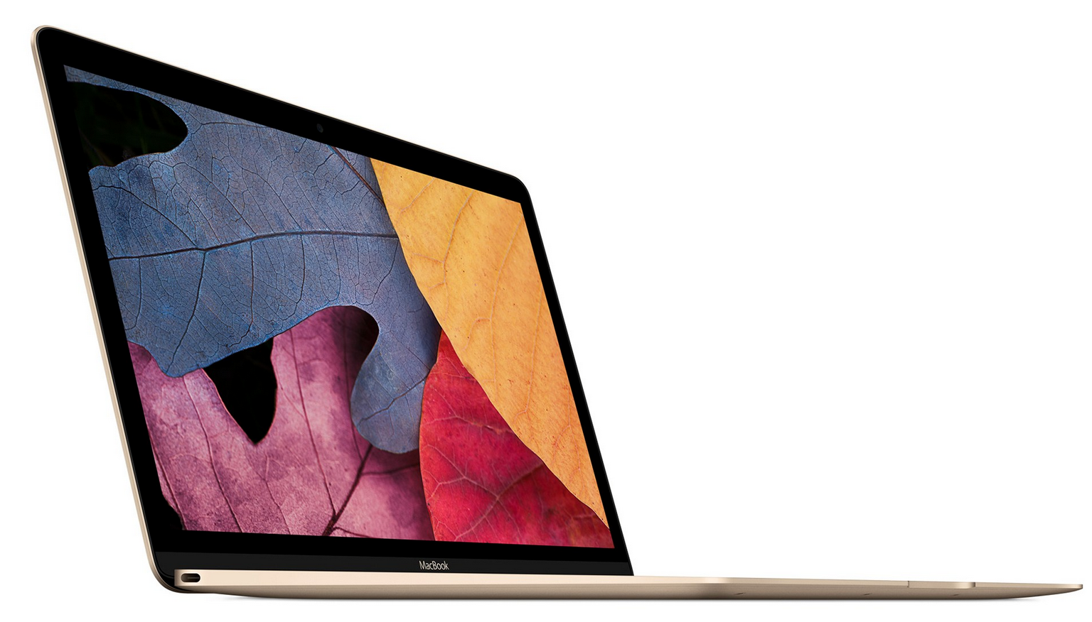 MacBook (2015) Review