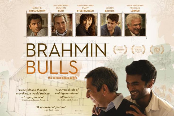 Brahmin Bulls