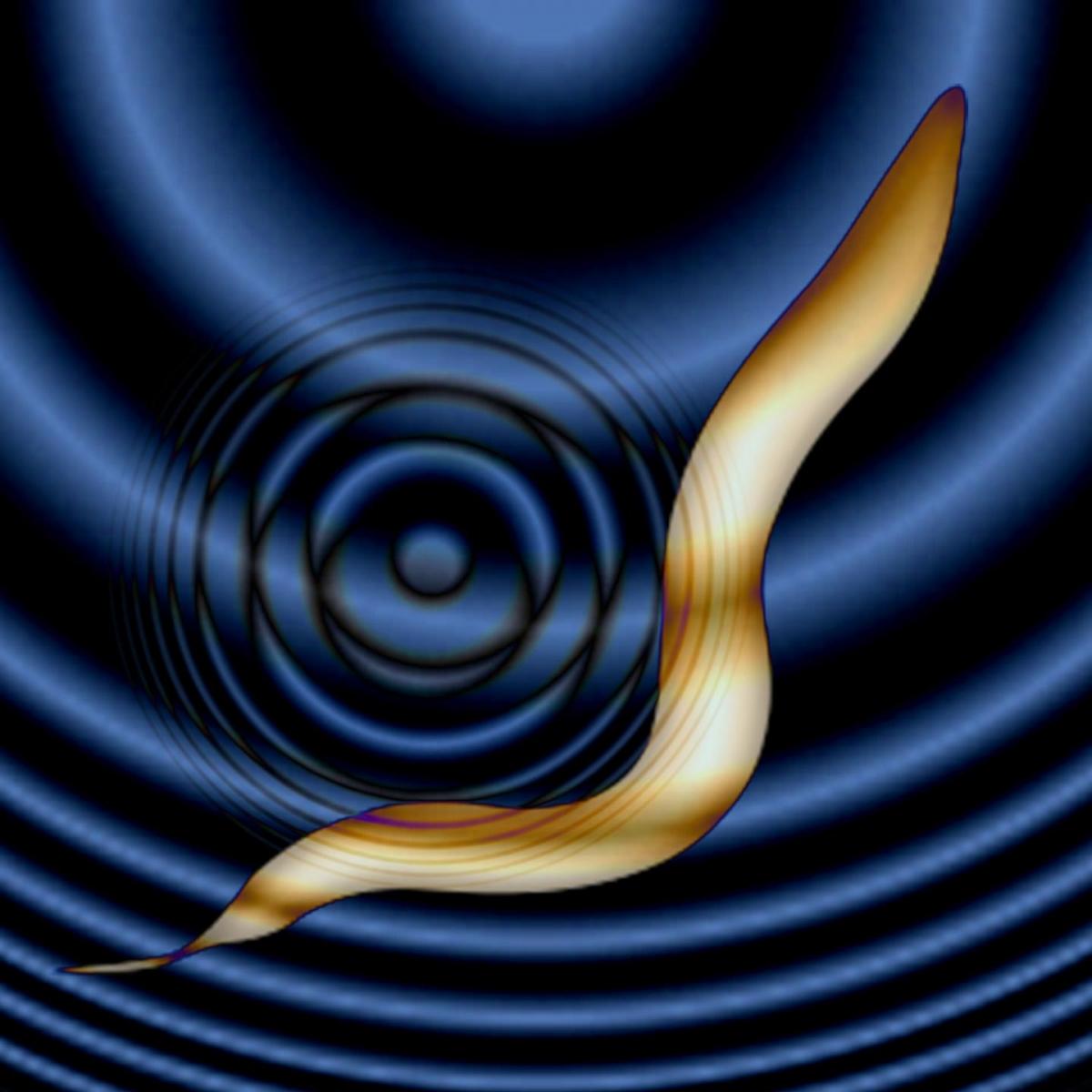 worm brains controlled sound waves