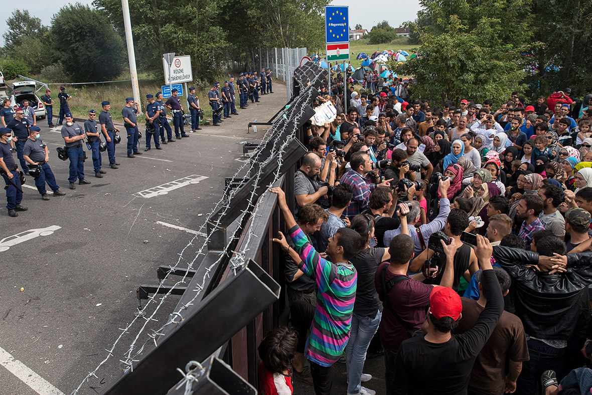Migrants refugees Hungary border Horgos