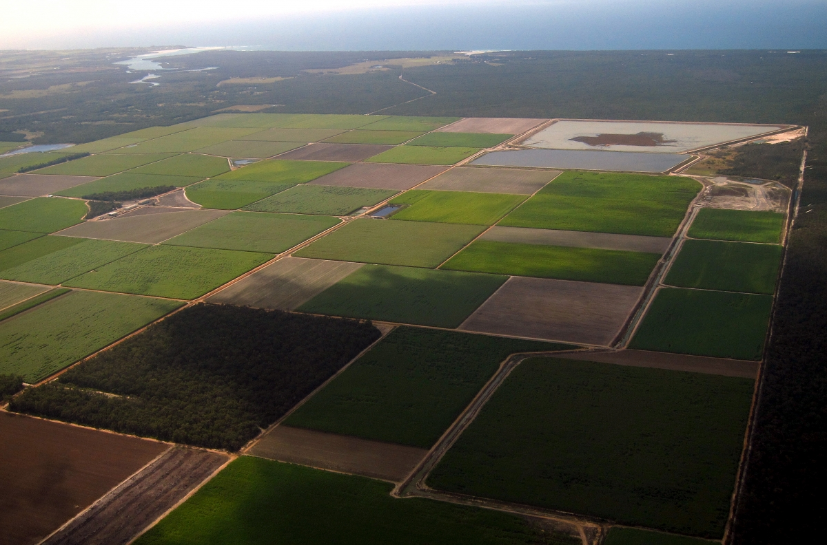 Farmland, Bundaberg