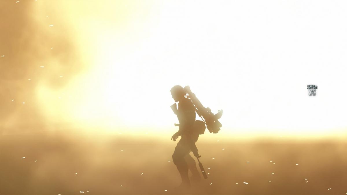 Glitch in Metal Gear Solid 5