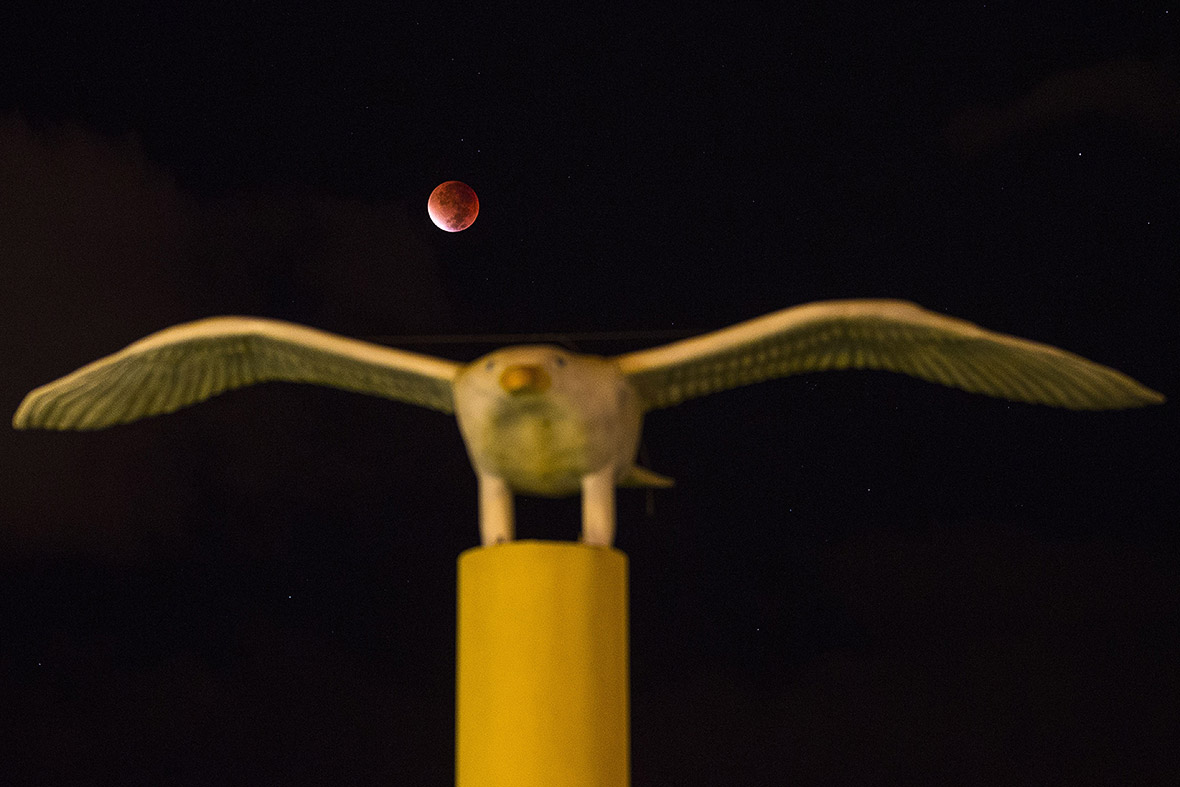 Supermoon bloodmoon Superbloodmoon
