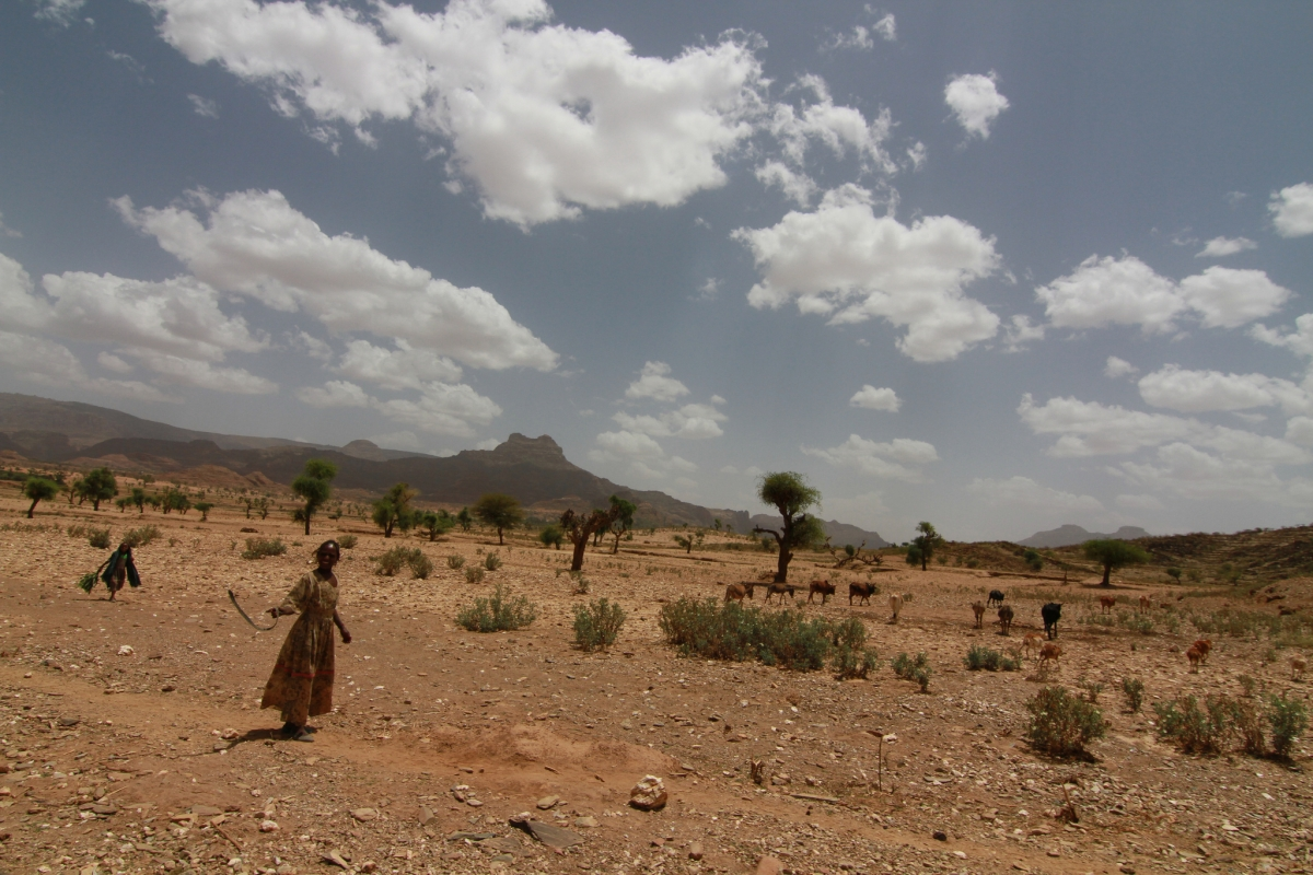 Horn of Africa climate change
