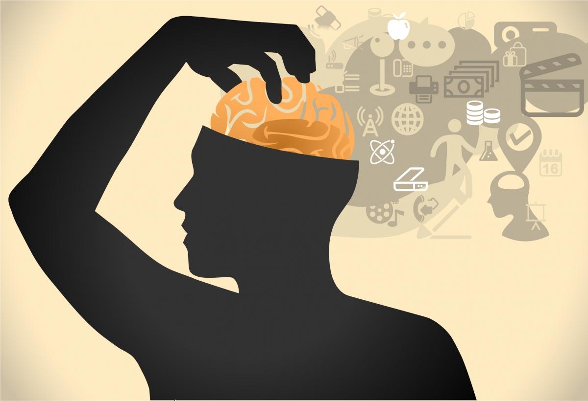 Brain games celebrity faces symmetrical