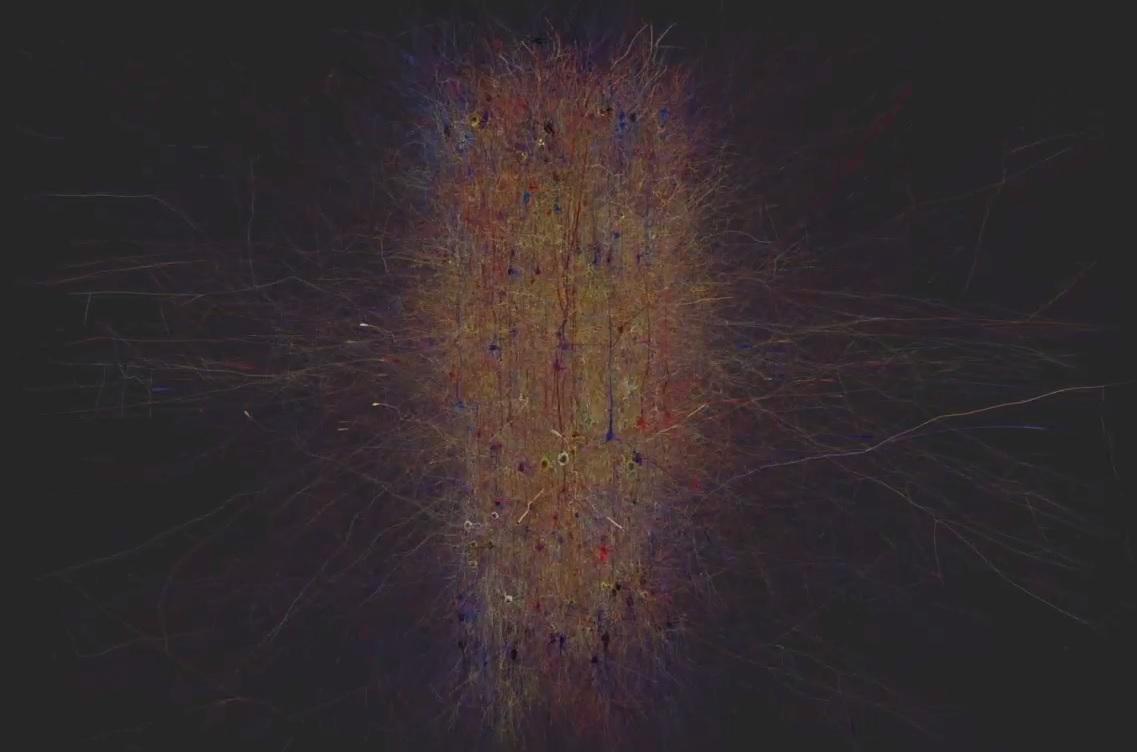 human brain project AI mapped