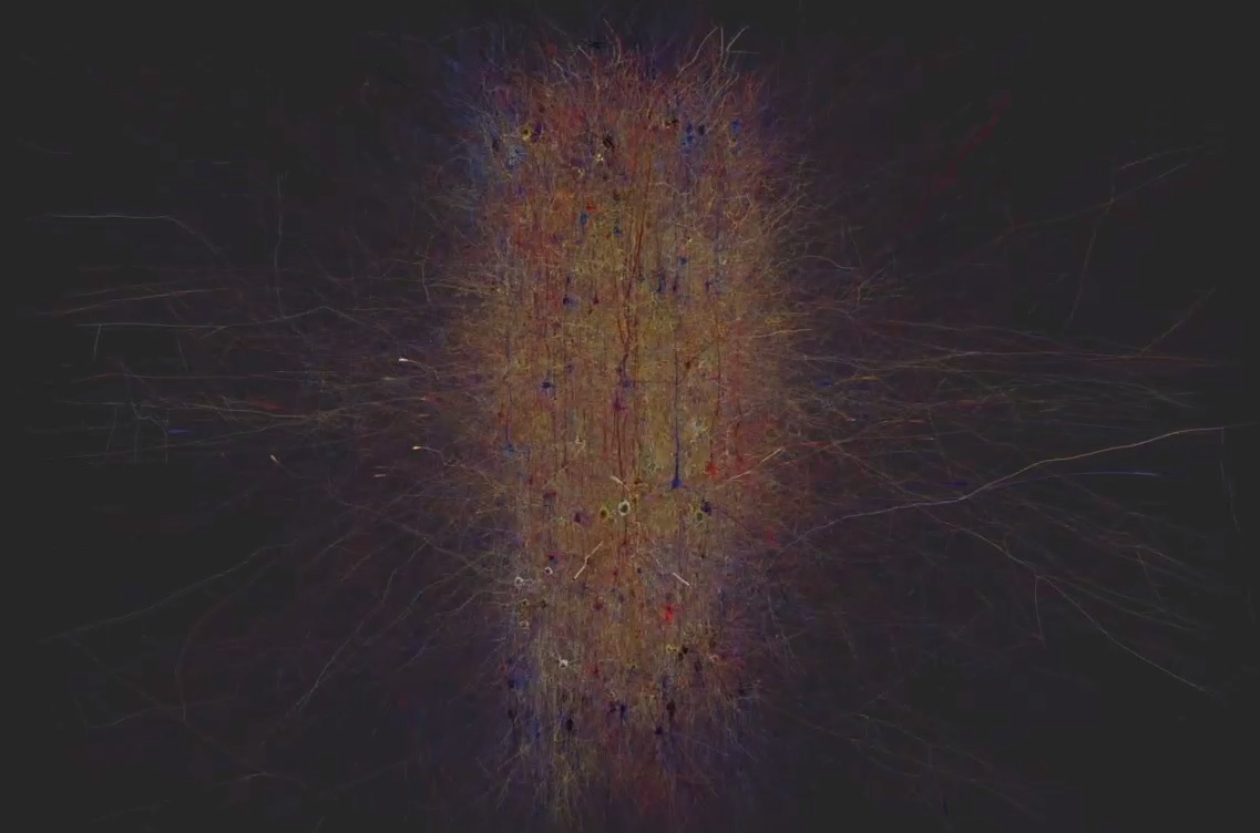 human brain project AI mapped