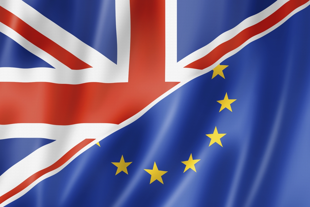 Brexit EU referendum