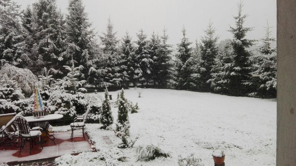 Snowfall in Krakow, Poland