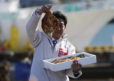 Fukushima fish radioactive