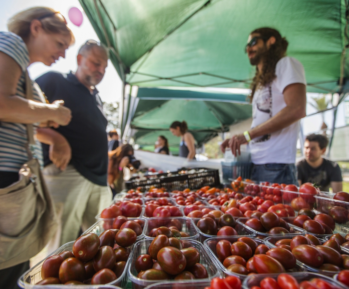 tomatoes vegan fest israel