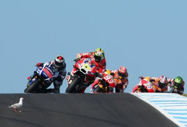 Seagull hits racer Andrea Lanone