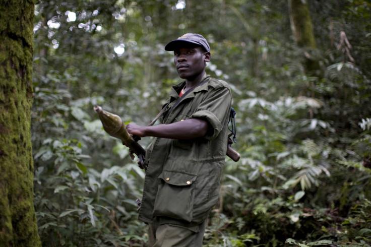 FDLR rebel group