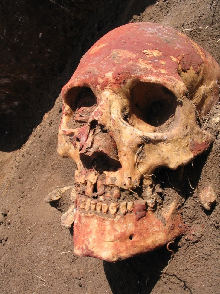 plague in bronze age