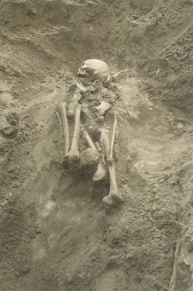 bronze age plague