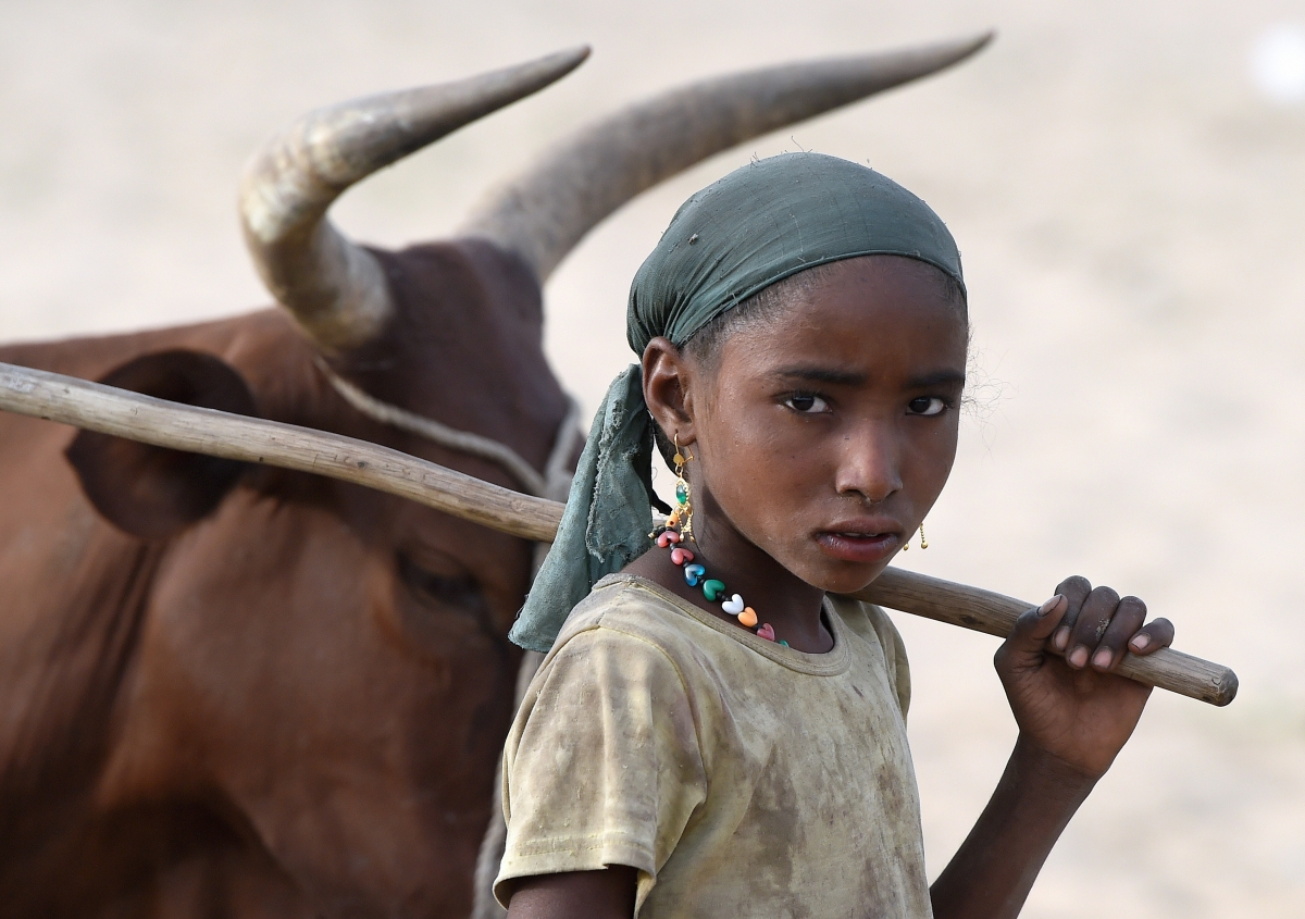 Child in Chad desert