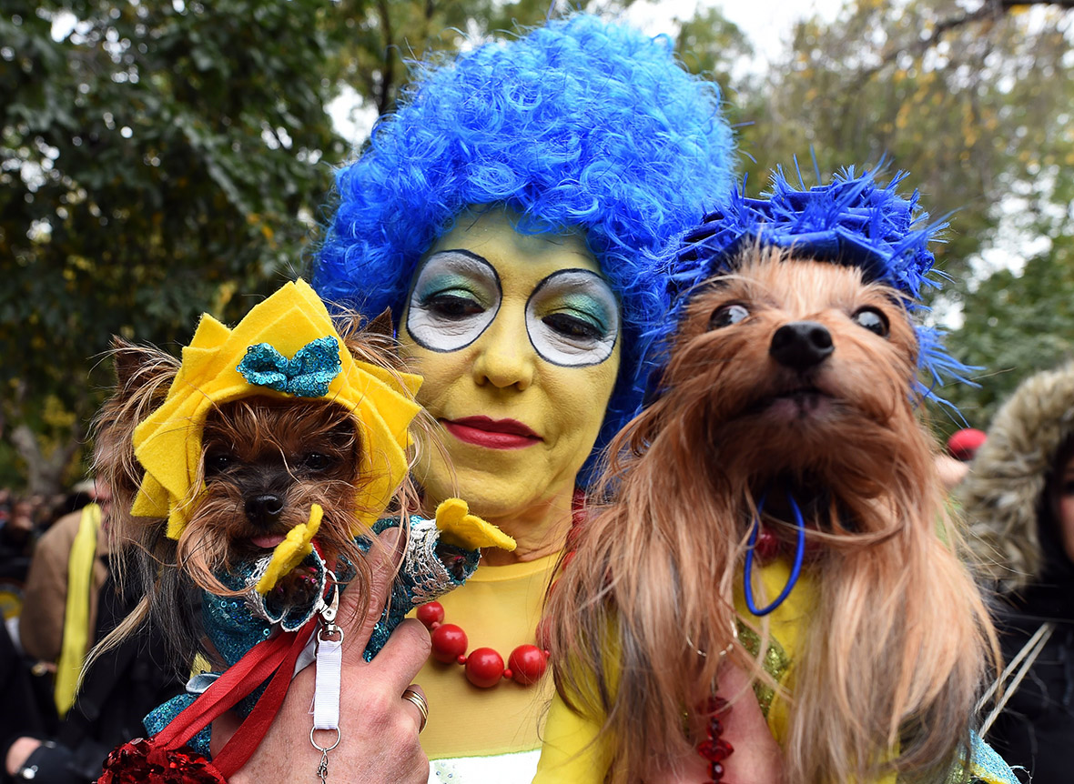 Halloween 2015: Pet costume ideas at New York's Tompkins Square ...