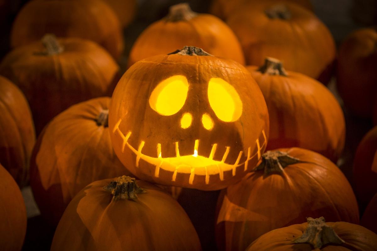 Halloween 2015 pumpkins jack o'lantern
