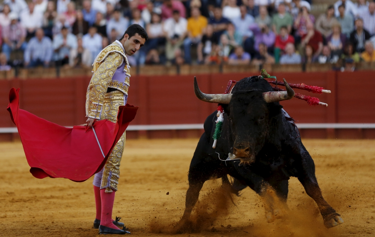 EU vote bullfighting