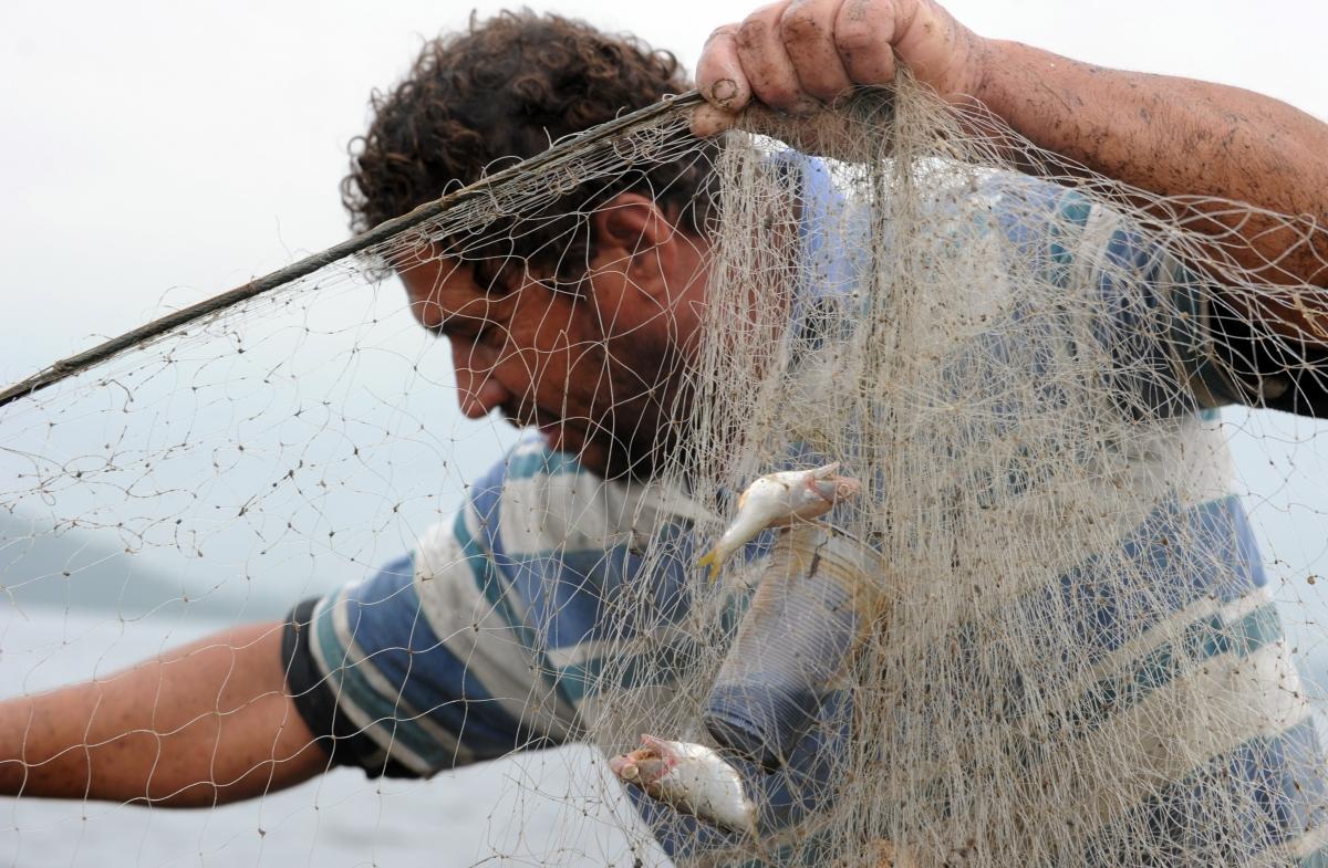 fish net litter