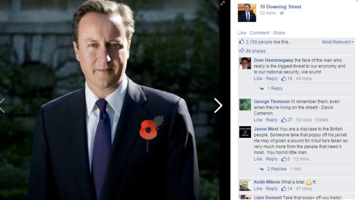 David Cameron, poppy