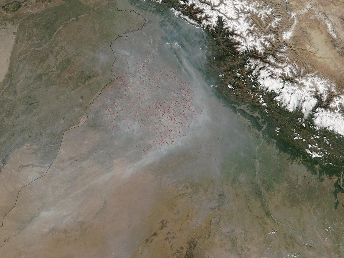 Crop burning in Punjab