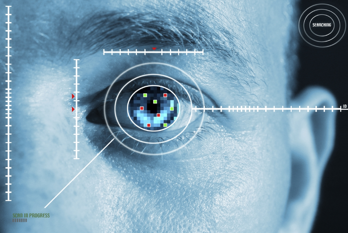 Biometric iris scanning
