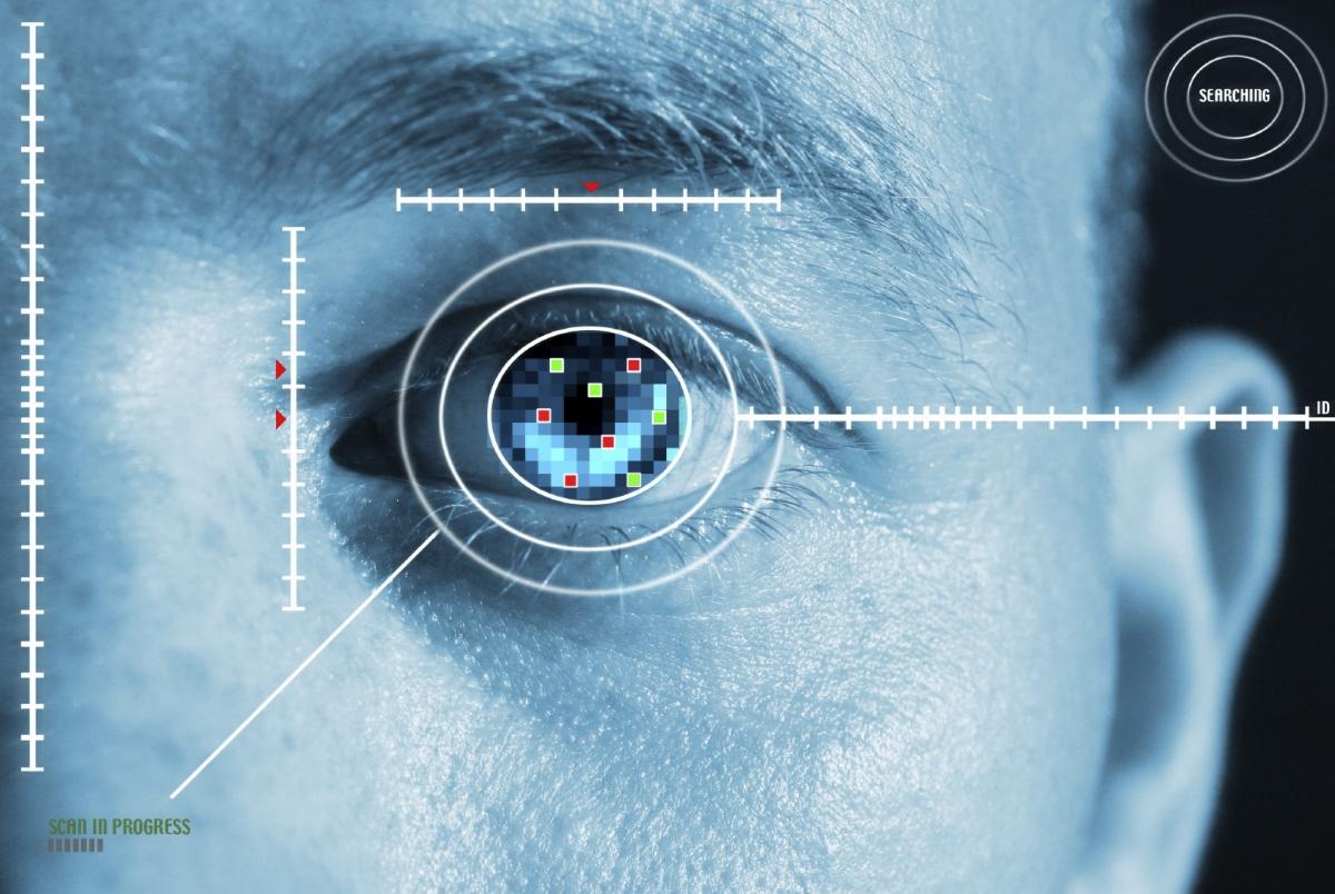 Biometric iris scanning