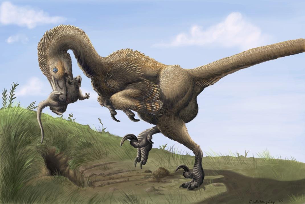 Dromaeosaurids