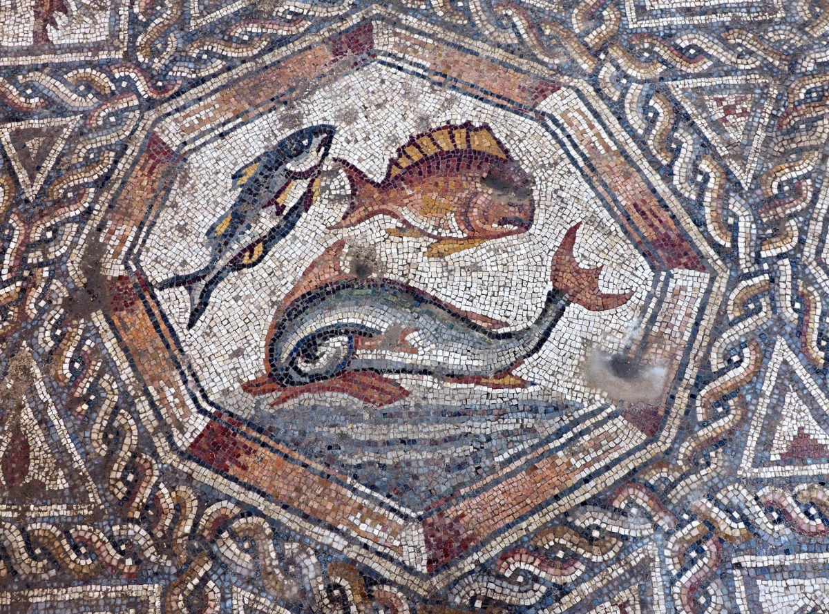 1700-year-old Roman-era mosaic uncovered in Israel